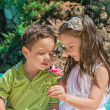 Little boy and girl — Stock Photo #11060243