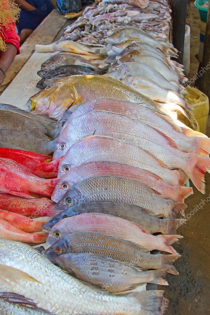 где купить рыбу у рыбаков