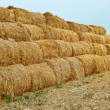 Stock Photo: Large haystacks
