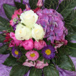 Foto Stock: Beautiful round floral bouquet