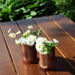 Decorative daisies in copper cans — Stock Photo #11428812