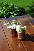 Decorative daisies in copper cans — Stock Photo