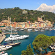 Aerial view on Portofino, Italy. — Stock Photo