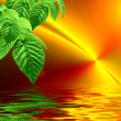 Green on a orange fractal background with sun reflected in water — Stock Photo