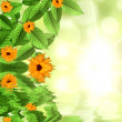 Natural green background with sun and flower reflected in water — Stock Photo #11750704
