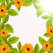 Natural summer green background with flower — Stock Photo
