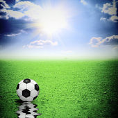 Classic soccer ball on green grass reflecting in water — Stock Photo