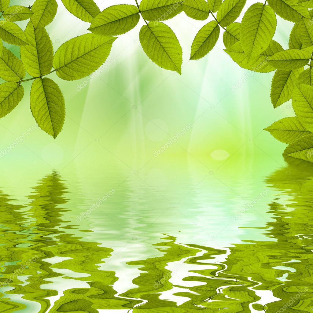 К�а�ив�й �он Ле�о П�и�ода �вое о��ажение в воде � С�оковое