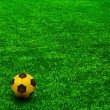The GOLD soccer ball on the green grass. Texture of green grass - Stock Photo
