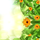 Natural green background with sun and flower — Stock Photo