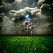 The weat field and storm with lightnings — Stock Photo