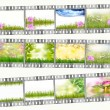 Film strip with different photos of nature — Stock Photo #12306429