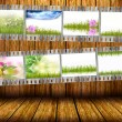 Film strip with different photos of nature — Stock Photo