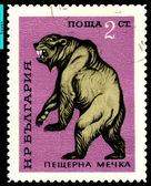 Vintage postage stamp. Cave Bear. — Stock Photo