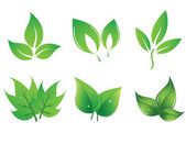 Set of green vector leaves — Stockvektor