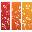 Collection of floral backgrounds — Stock Vector #11390639