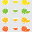 Citrus sticker collection — Stockvectorbeeld