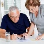 Senior Couple Playing Leisure Games — Stock Photo #10871754