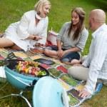 Barbecue Picnic in Park — Stock Photo