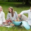 Friends with Barbecue in Park — Stock Photo