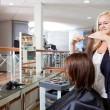 Hairdresser Cutting Client's Hair — Stock Photo #11536751