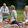 friends bbq in park — Stock Photo #11536999