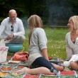 vrienden bbq in park — Stockfoto