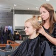 Happy Hairdresser and Client — Stock Photo #11537037