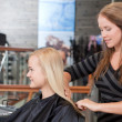 Royalty-Free Stock Photo: Hairdresser Brushing Customers Hair