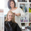 Woman at the Hairdresser Salon - Stock Photo
