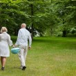 Couple Walking With Portable Barbecue — Stock Photo #11658753