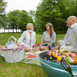 Friencds Barbecue Picnic — Stock Photo