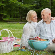 Royalty-Free Stock Photo: Couple On An Outdoor Picnic