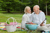 Couple On An Outdoor Picnic — Stock Photo