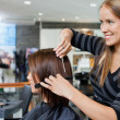 Hairdresser Giving a Haircut To Woman - Stock Photo