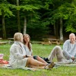 Friends Having Barbecue Picnic Outdoor — Stock Photo #11795138