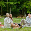 Friends Having Barbecue Picnic Outdoor — Stock Photo