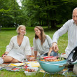 Friends Having Meal At An Outdoor Picnic — Stock Photo