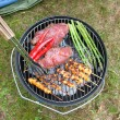 Meat And Veggies Cooking On Barbecue - Foto Stock