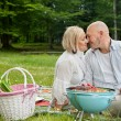Loving Couple On An Outdoor Picnic - Stock Photo