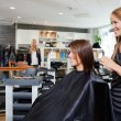 Hair Dresser with Customer in Beauty Salon - Stock Photo