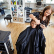 Woman Getting a Hair Cut - Stock Photo