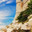 Dubrovnik old city walls — Stock Photo #12001623