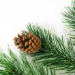 Xmas tree decoration isolated on white — Stock Photo