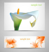 Background with White Calla and orange lilies — Stock Vector