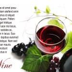 Red Wine — Stock Photo #11259650
