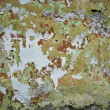 Grunge Wall Texture — Stock Photo #11954318