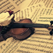 Old violin with musical notes and roses — Stock Photo #11680454