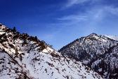 Bergen bedekt met sneeuw — Stockfoto