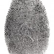 Real fingerprint - Stock Photo